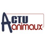 Actu Animaux