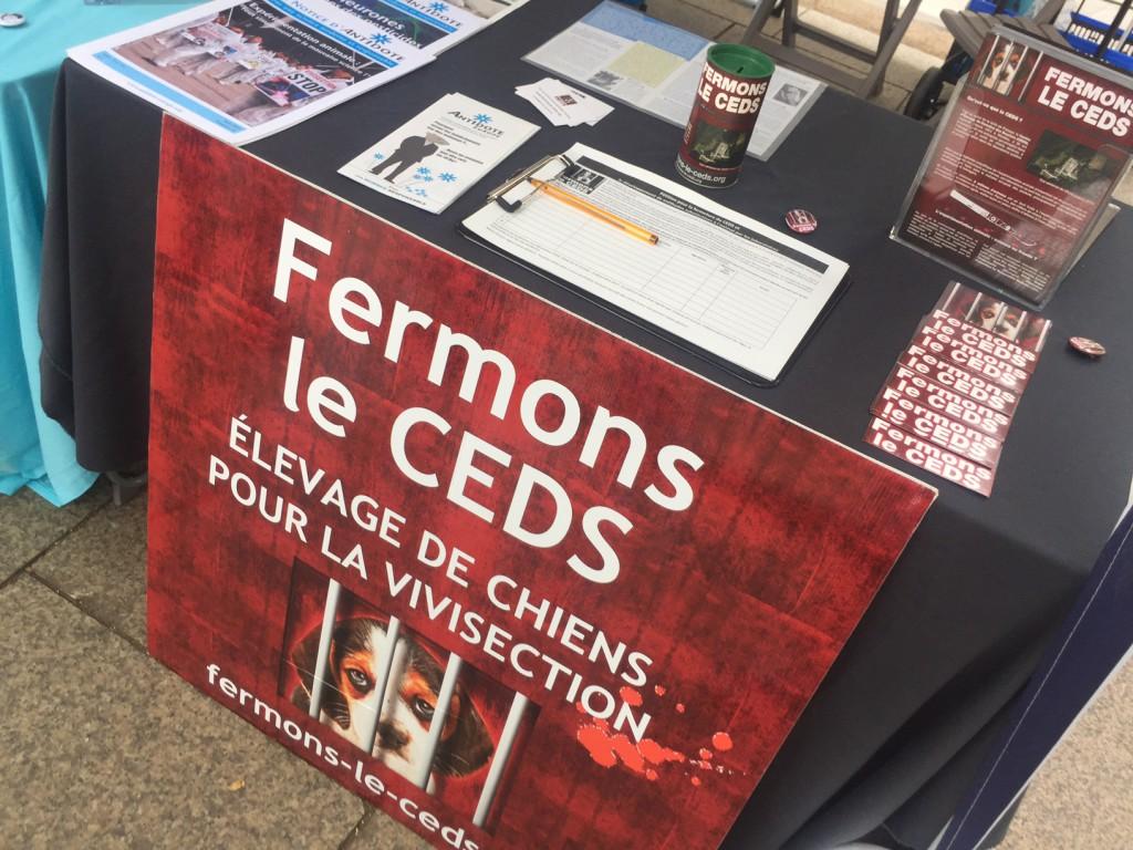 St Etienne – 8 juillet 2017